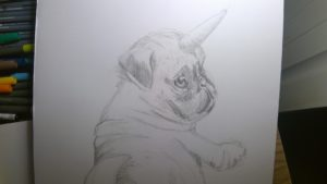 drawing of pug puppy with a hornm